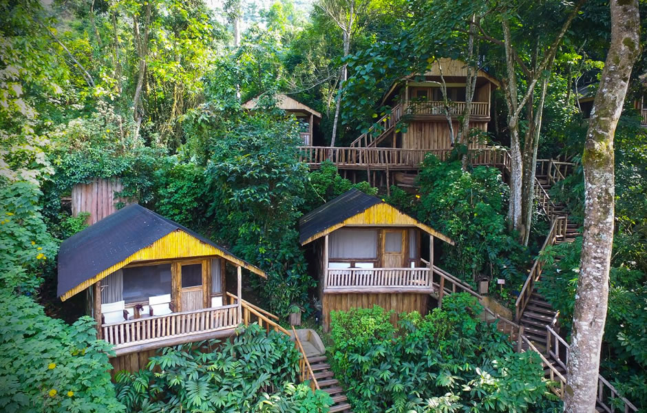 Where to stay in Bwindi Impenetrable National Park?