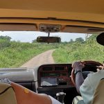 How To Get To Bwindi from Kampala