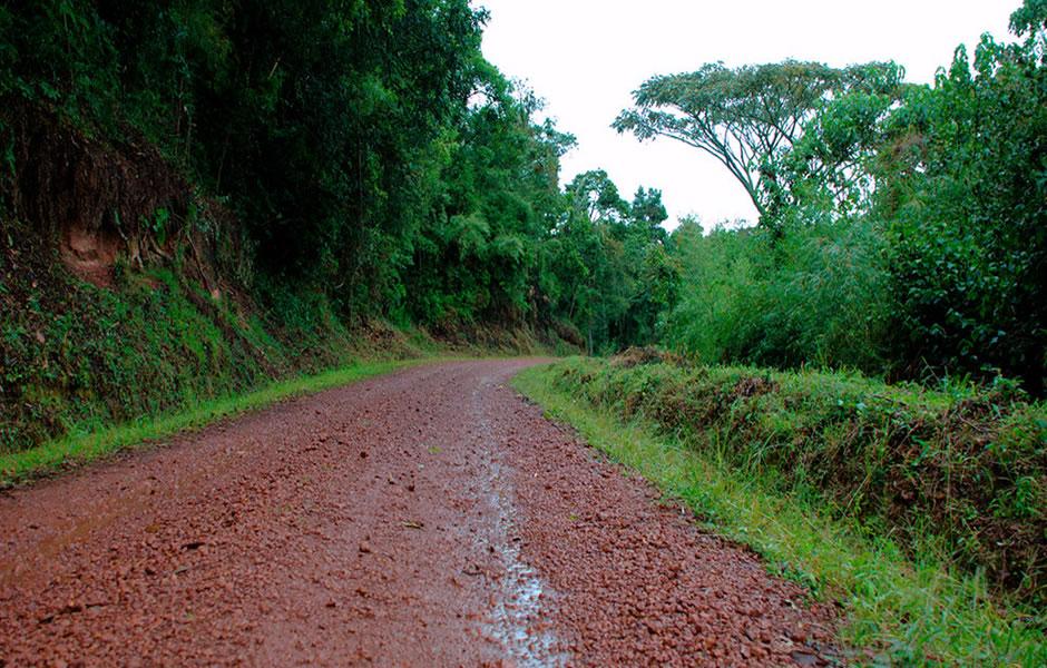 Rushaga in Bwindi National Park