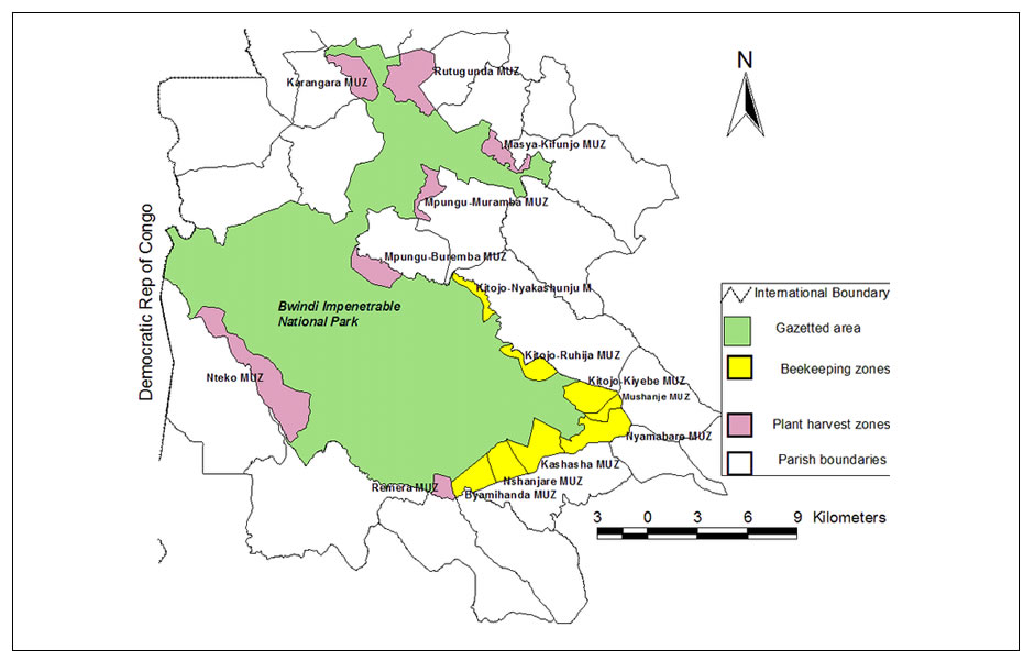 Popular Gorilla trekking Sectors