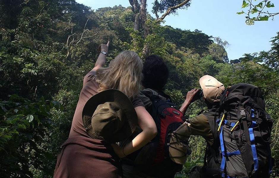 best time for birding in Mgahinga national park