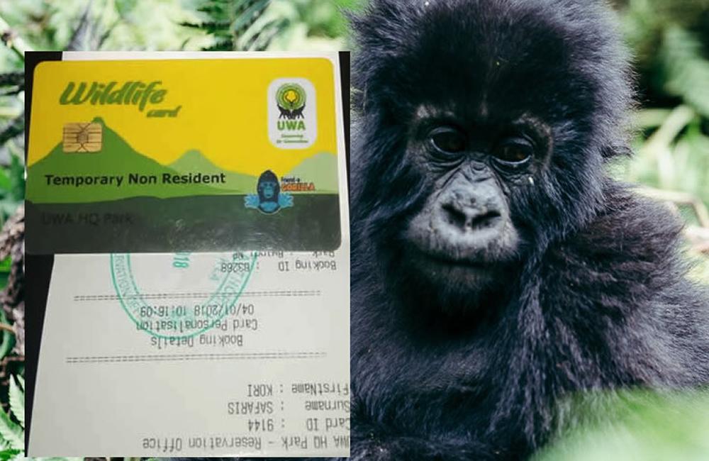 Is a gorilla permit refundable